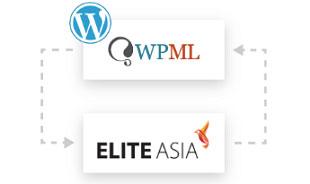 Website Localisation Integration with WPML plugin